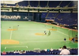 Inside the Metrodome. Indoor Baseball???