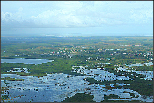 Flooded flat, sandy plains of Belize after the rainy season.
