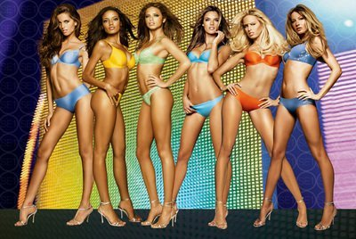 Victoria's Secret Angels Sexy Celebrity Limited Print Photo Poster 24x36 #1