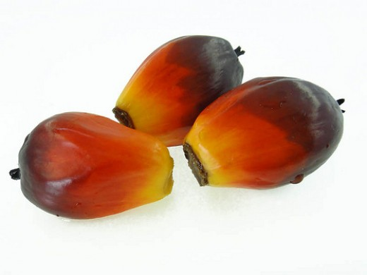 Palm fruit produces palm oil and palm kernel oil.