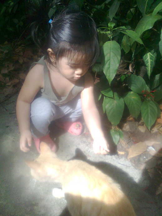 My daughter playing with the cat
