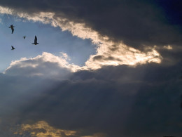 Serenity from Paul Linton flickr.com