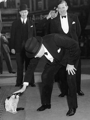 Sir Winston Churchill pets a cat.