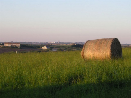 """We climbed up to the top of a giant hay """"wheel"""" to sit for a while and enjoy the view."""