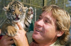 """Does Bindi Irwin Support """"Animal Abuse""""? Ridiculous Steve Irwin and SeaWorld Criticism Surges"""