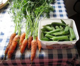 Carrots and Peas from My Garden