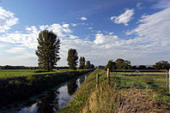 River Brue, an artificial channel or 'rhyne' for drainage