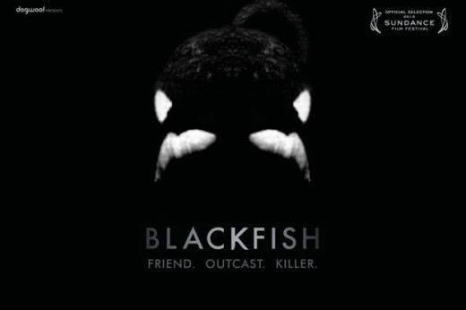 """Blackfish"" movie poster, released in January 2013."