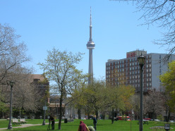 The CN Tower as seen from Trinity Bellwoods Park in Toronto.