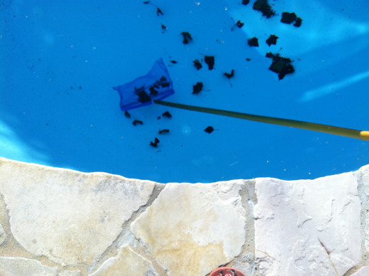 Leaves at the bottom of a pool are hard to get. Use a net under water and gently run in along the bottom surface to catch hard-to-reach debris.