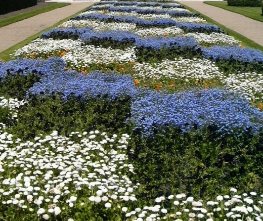 Checkered flower garden in Tours, France. Gardening for Beginners