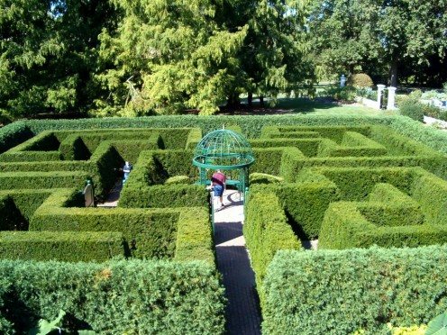 This labyrinthine maze, in the Doris Waters Harris Lichtenstein Victorian Garden, is so fun.  Located at the Missouri Botanical Garden in St. Louis.