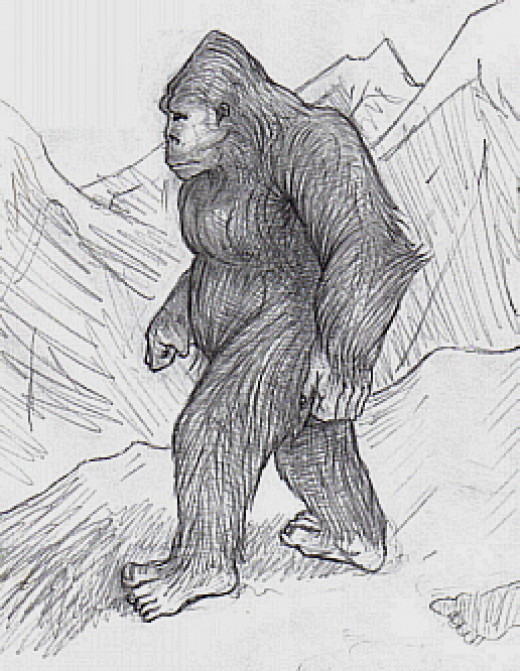 Does Bigfoot Or Sasquatch Exist? Well I Can Tell You That Yes Bigfoot Does Indeed Exist. I Saw It.