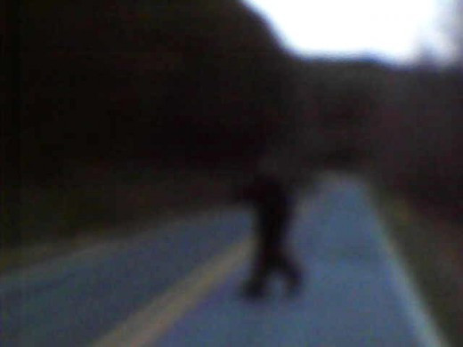 There is a photo of what crossed the road in front of me on Golden Valley Church Road on March 22 , 2011. At the point in the photo there it is raising its arm over its head. It snarls at me at this point.