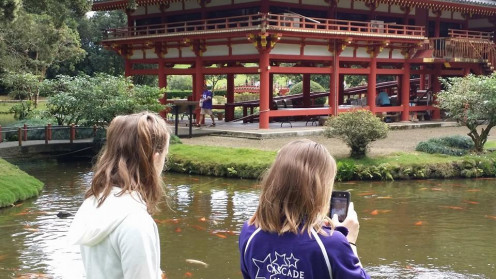 Taking photos of the Koi fish at the Byodo-In Temple