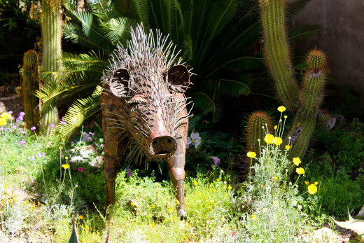 A touch of whimsy:  a javelina sculpture