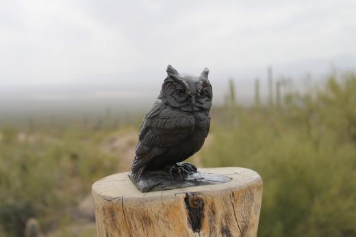 Woohoo! A bronze owl.