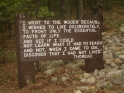 Favorite Quotes of Henry David Thoreau's Walden