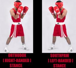 Boxing stances