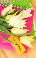 Funny Mother's Day Poems & Jokes