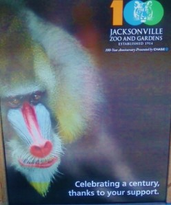 A Day at the Jacksonville Zoo