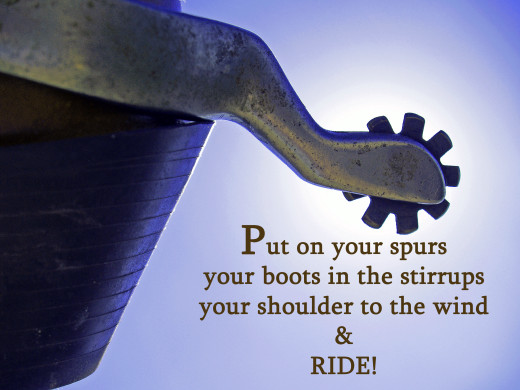 Put on your spurs...