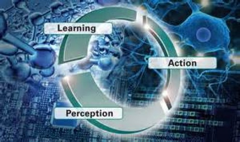 simple stimulus learning essays Analyze forms of simple stimulus learning author's name the course the name of professor the date of submission abstract learning is the process of obtainin.