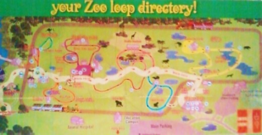 Our loop map helped us to navigate our way through the zoo grounds, which were also clearly marked with signs.