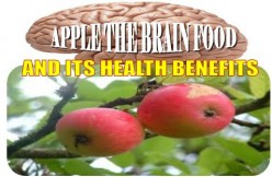 Apple The Brain Food And Its Health Benefits