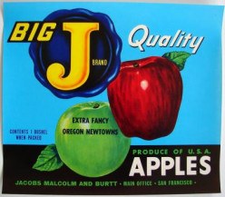 free cross stitch pattern Big J Apples