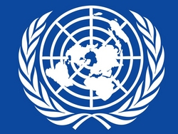 the United Nation Development Programme has achieved a lot in this field over the past decade.