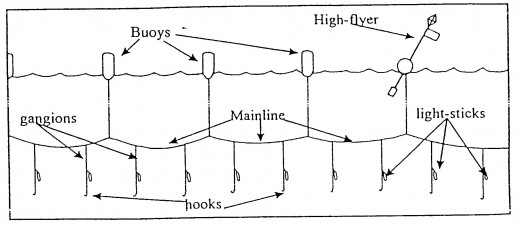 Longline Fishing Line