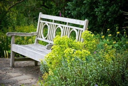 A wooden bench makes not only a great garden accent but a relaxing place to sit as well.