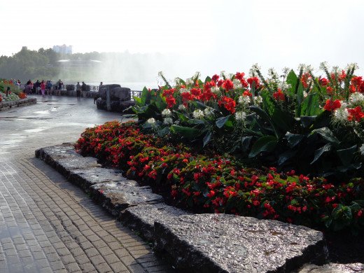 Scenic Pictures of Niagara Falls