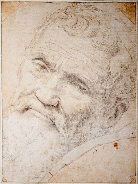 Portrait of Michelangelo Buonarroti http://en.wikipedia.org/wiki/File:Michelango_Portrait_by_Volterra.jpg