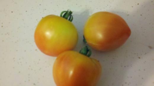Tie Dye Tomato