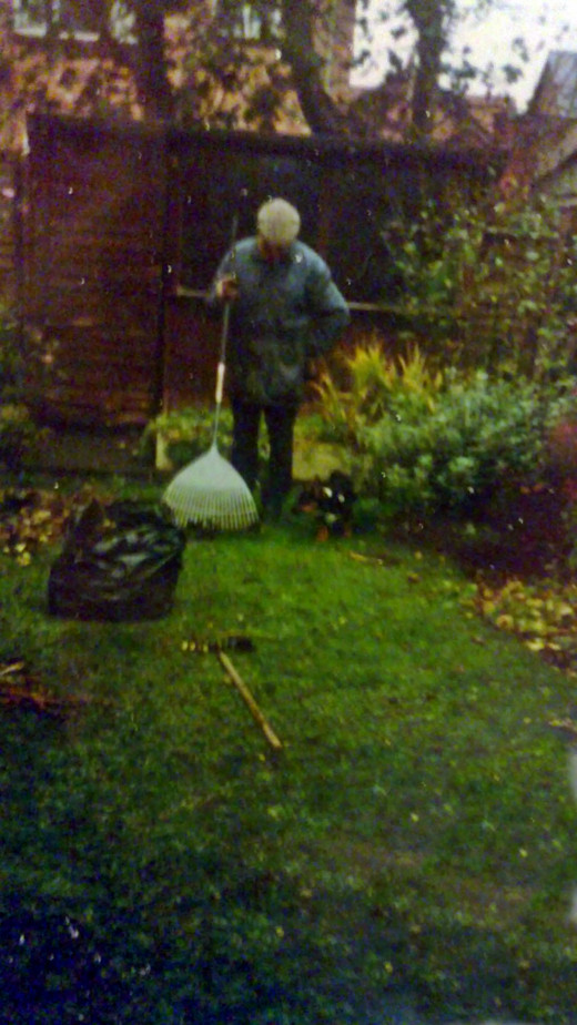 """When dad did my garden, my dog, Buster, was never far away and loved to """"help""""!"""
