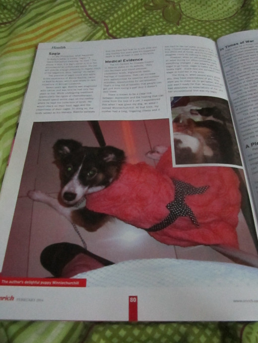 Page three of article. This is my dog, Winniechurchill. She was my Sagip.