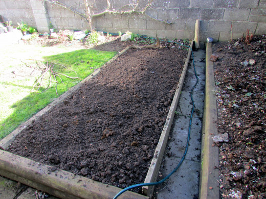 Prepare the soil in your vegetable patch before planting out any seeds