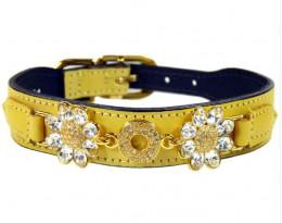 Designer dog collar