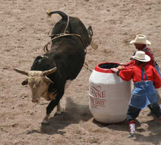 Tough rodeo clowns and a bull