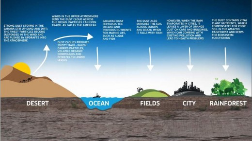 An infographic explaining how the Sahara desert dust is good for ecosystems, but not so good for city dwellers.