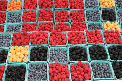 A List Of 12 Kinds Of Berries