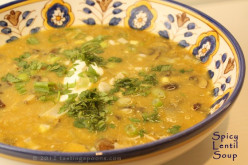 Mrs Geekies Homemade Soups - Spicy Lentil, Leek and Potato - quick and really easy to make.