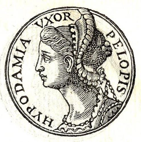 Hypodamia