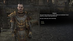 The Elder Scrolls Online Walkthrough - Davon's Watch: Legacy of the Ancestors, Delaying the Daggers, City Under Siege