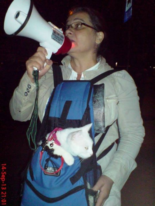 Maria with her deaf cat at a rally in Bucharest, September 2013