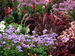 Organic and Inorganic Mulch Types