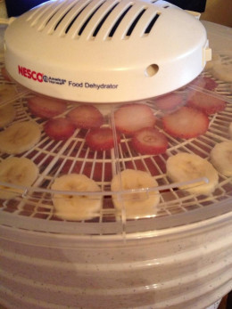 Strawberries and bananas drying in our food dehydrator.