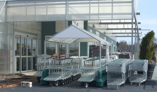 This line-up of shopping carts is not born of arrogance.  You really will want to fill it up!